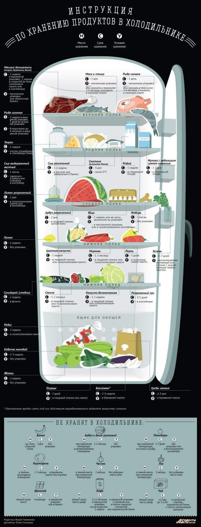 Как хранить продукты в холодильнике. Инфографика | Бытовая техника | Кухня…