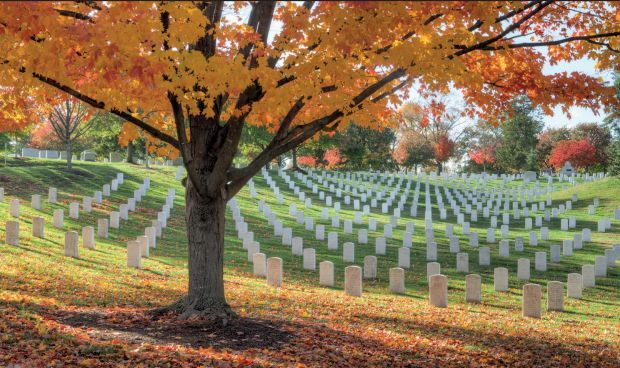ARLINGTON NATIONAL CEMETERY, ARLINGTON, VIRGINIA, U.S.A.Today (May 29, 2017) is Memorial Day in the U.S., and public services at Arlington National Cemetery usually include an address by the American president. These serene 612 acres—originally owned by George Washington's adopted grandson—hold more than 400,000 graves, many belonging to American veterans.