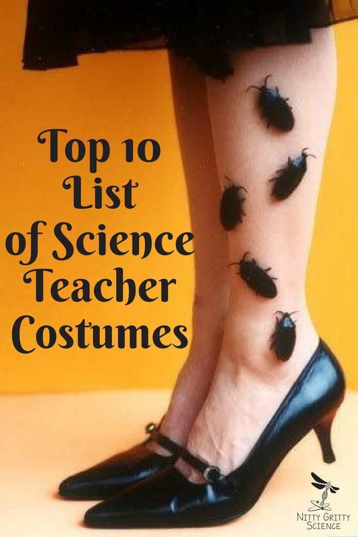 top-10-list-of-science-teacher-costumes                                                                                                                                                                                 More
