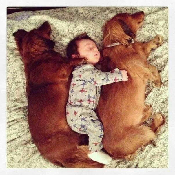 .AH TO SLEEP LIKE A BABY MAY BE WHAT I MISS THE MOST WITH AGE! RP BY HAMMERSCHMID
