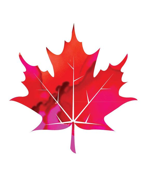 8 best hockey tats ideas images on pinterest canadian tattoo printable leaf art print in redpink alcohol ink patterned leaf art maple sciox Choice Image
