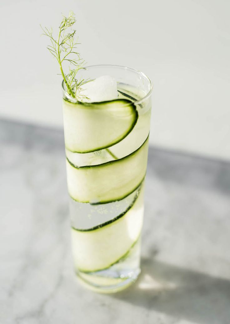 Cucumber Fennel Spanish Gin & Tonic | recipe on craftandcocktails.co
