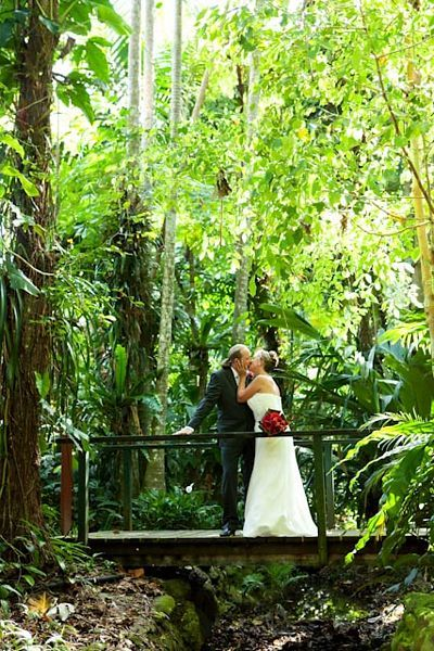 Get married in the stunning Cairns rainforest with Australian Dream Weddings.