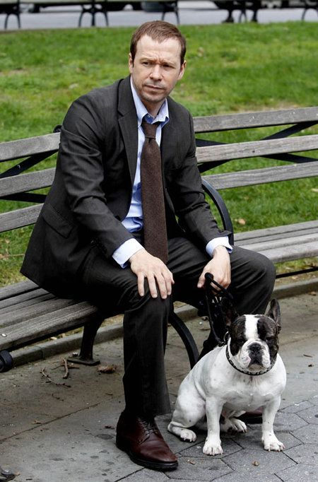 Photo of Donnie Wahlberg & his  Dog Lumpy