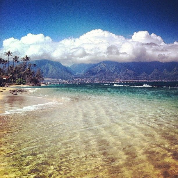 We miss you maui much...