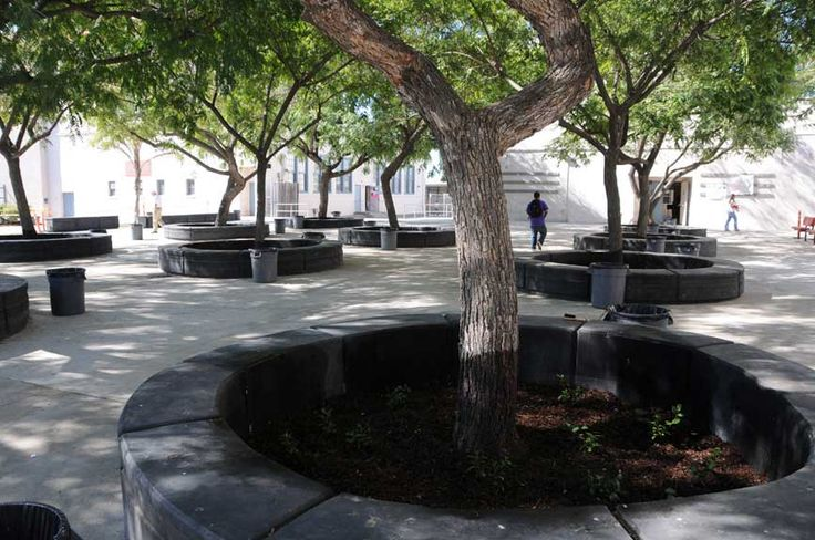 Seating Around Trees With Planting Beds Inside Reading