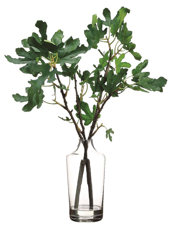 A charming faux interpretation of fig branches in a simple glass vase.