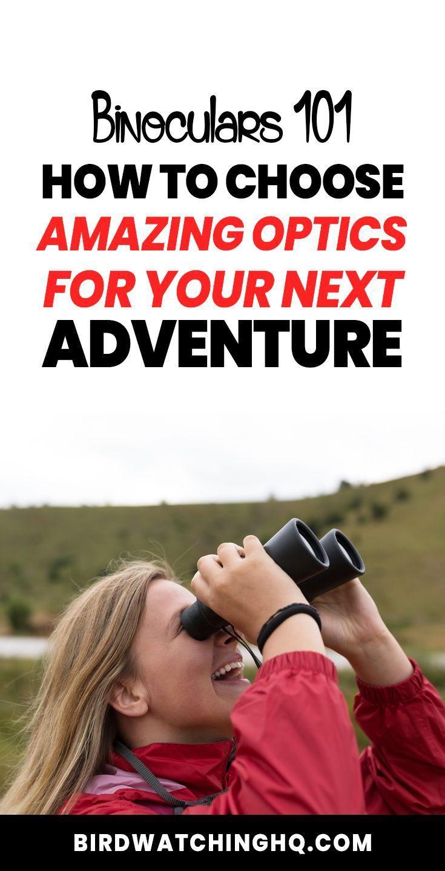 How To Choose Binoculars (Step-By-Step Guide - 2019 | Bird