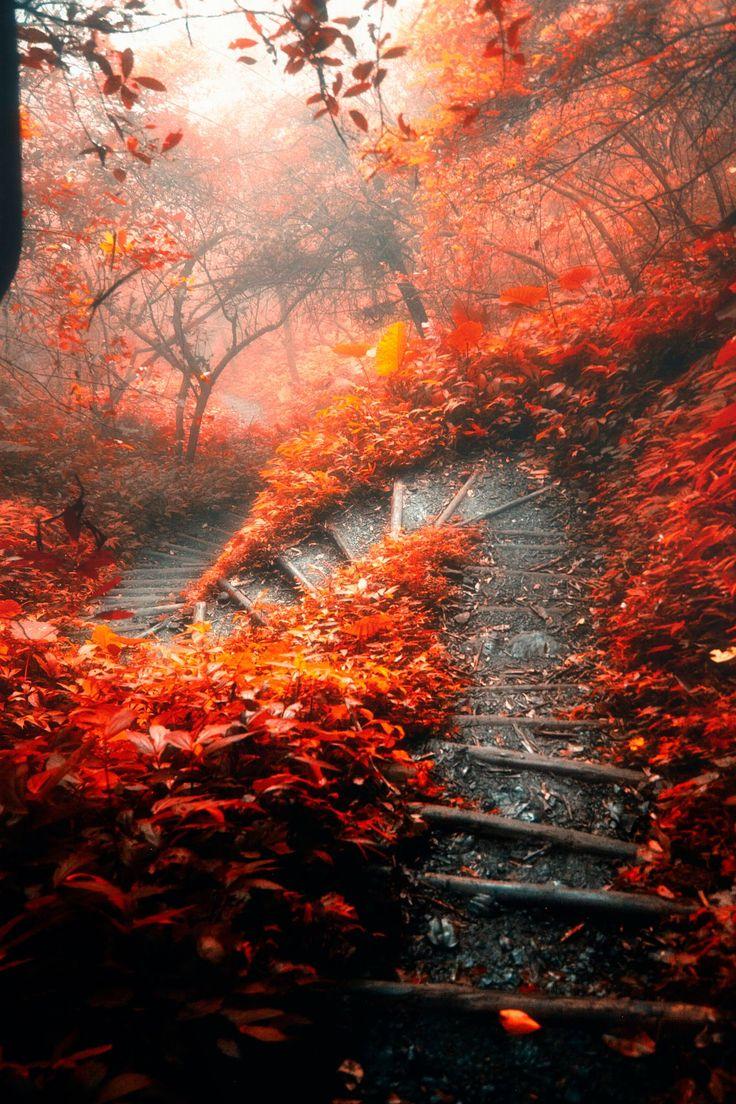 The s-shaped path by Hanson Mao(毛延延)