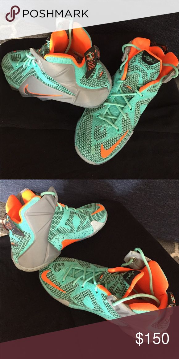 Nike LeBron James 12 youth basketball shoes My daughter only wore these a few times & doesn't play basketball anymore! Nike Shoes Sneakers