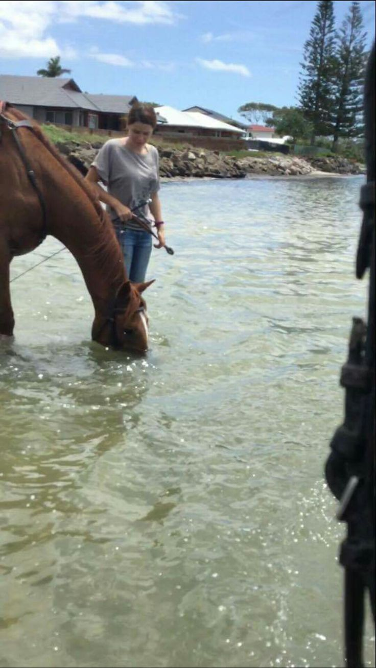 Took Bug to the beach for the first time with a friend. Both horses were terrified by the waves at first but eventually got into some splash battles.
