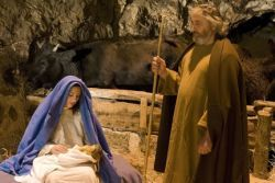 The best sicilian living Christmas cribs