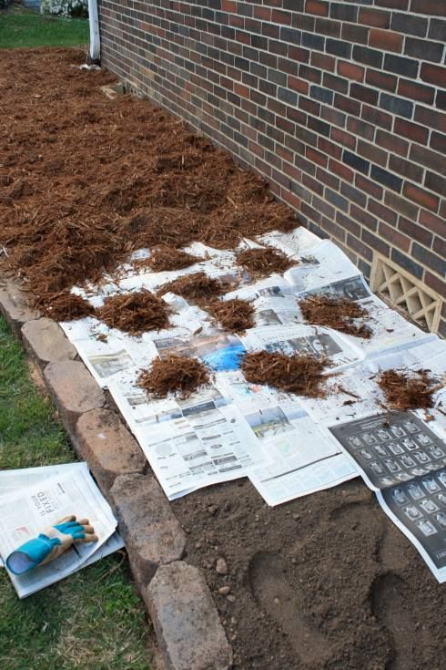 Put newspaper over the dirt 3-4 pages thick & then cover it with mulch. The newspaper will prevent any grass & weed seeds from germinating, but unlike fabric, it will decompose after about 18 months. By that time, any grass & weed seeds that had been present in the soil will be dead. It's green, it's cheaper than fabric, & when you decide to remove or redesign the bed later on, you will not have the headache you would with fabric.