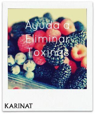 Los frutos rojos ayudan a eliminar toxinas! Beneficios de los Frutos Rojos Karinat! KARINAT Berries health benefits!