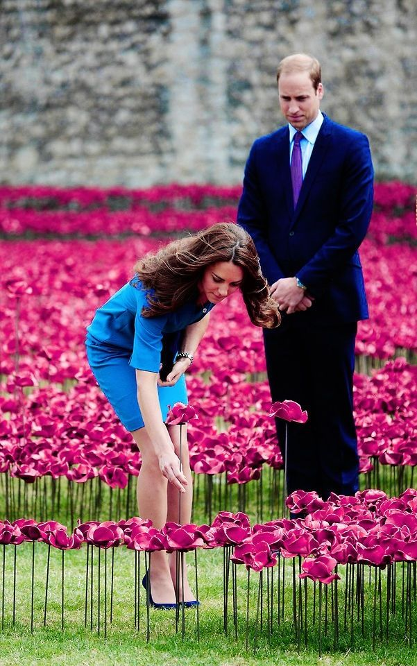 William, Kate and Harry add to 888,246 poppies at the Tower of London