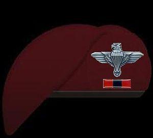 44 Parachute Engineer Regiment(South Africa).