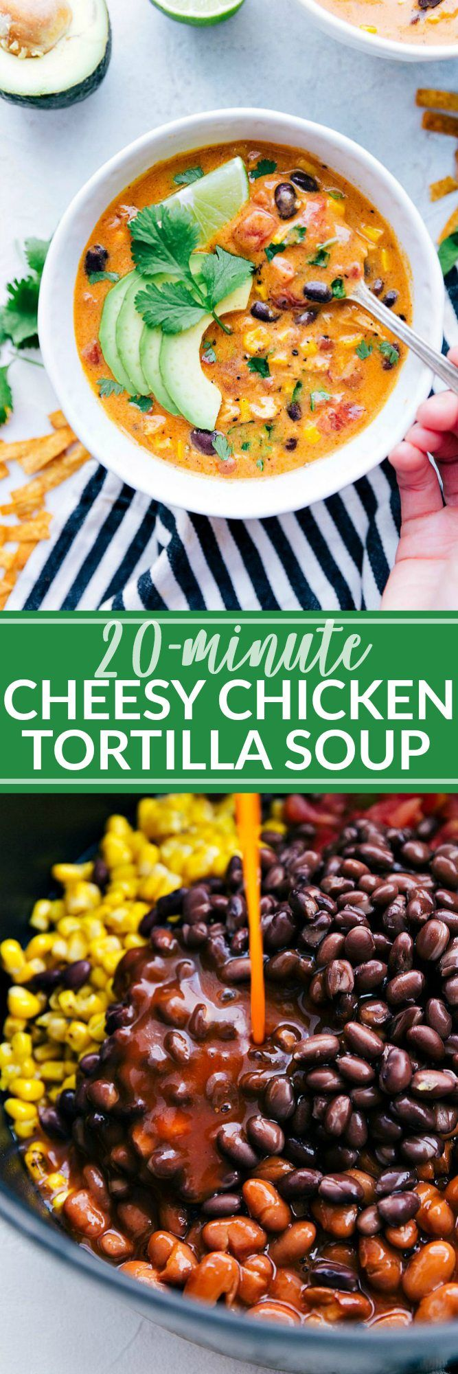 20 MINUTE cheesy and creamy chicken tortilla soup. EVERYONE goes crazy over this simple soup! via chelseasmessyapron.com #comfortfood #soup #chicken #cheesy #tortilla #dinner #lunch #cheesy #creamy #easy #quick #20minute
