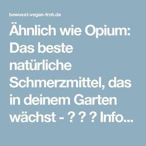 Ähnlich wie Opium: Das beste natürliche Schmerzmittel, das in deinem Garten w… Andrea Lemberger