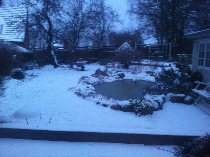 Winther in the garden