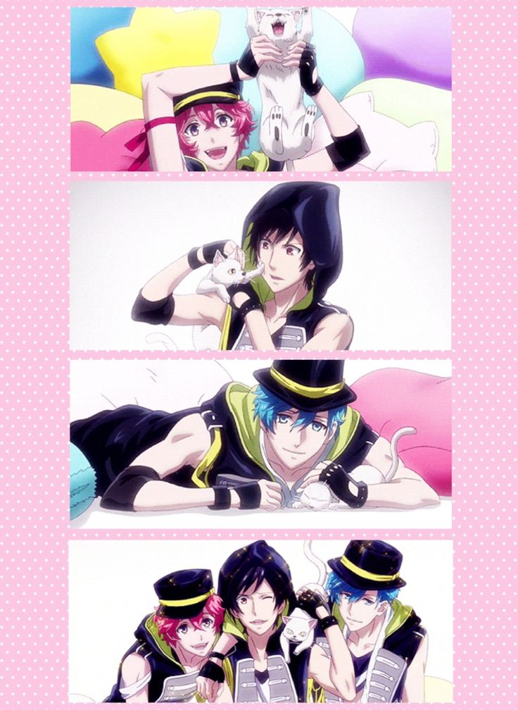 B-project kodou ambitious , THRIVE- Nothing cuter than a anime guys in a photo shoot with and adorable kitty!