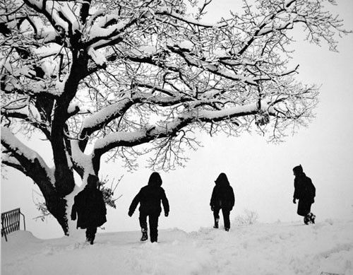 Ηπειρος Αλμπουμ: Μέτσοβο Φωτογράφος: Κώστας Μπαλάφας
