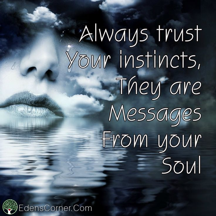 Always Trust Your Instincts Quotes Daily Inspiration Quotes