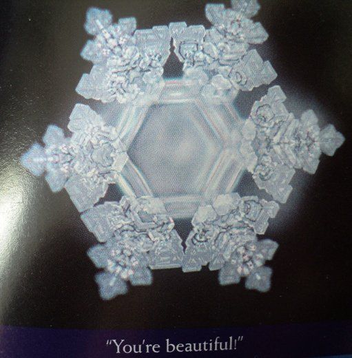 """Dr. Masaru Emoto is the world renowned Japanese researcher, lecturer and bestselling author behind a series of """"water crystal"""" research. He has..."""