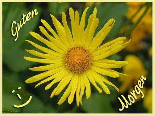 morgen zusammen - http://guten-morgen-bilder.de/bilder/morgen-zusammen-50/