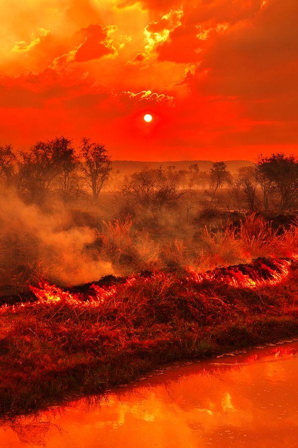 Kimberley Bush Fire, Kununurra, Australia
