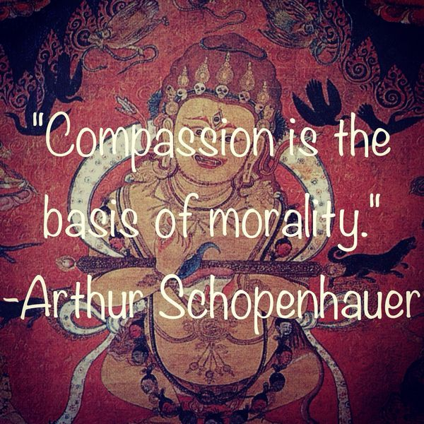 ❤️☀️ Compassion is the basis of morality. Arthur Schopenhauer