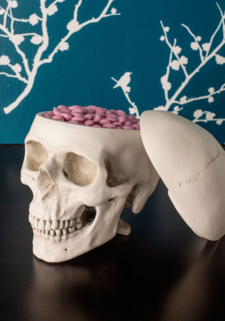 Think Outside the Box. Fill your head with fresh inspiration when admiring this smart skull box! #cream #modcloth