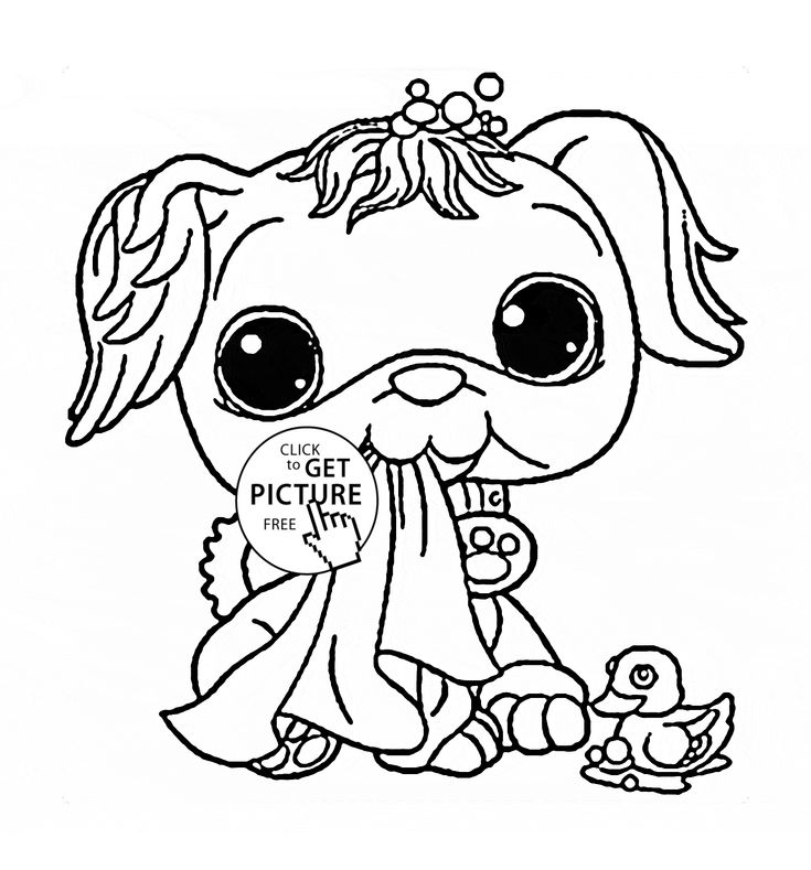 114 best Animals coloring pages images on Pinterest Coloring