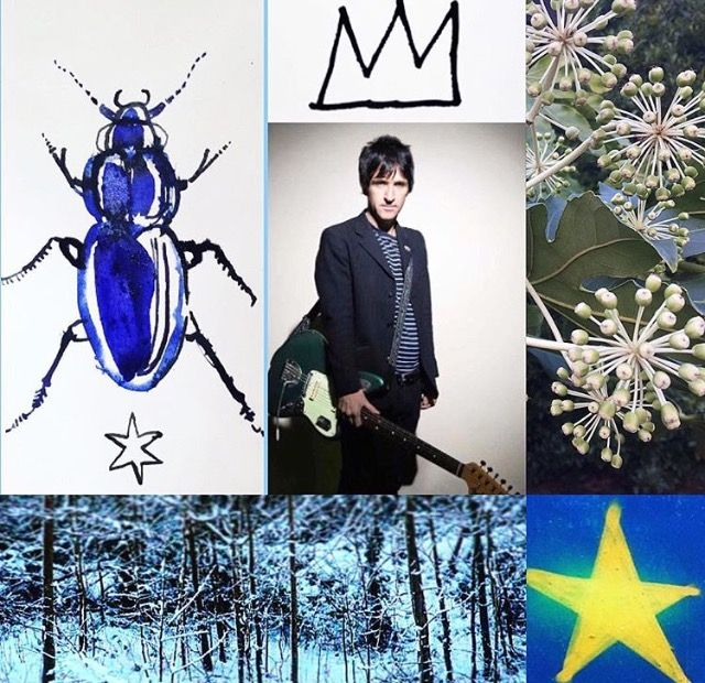 Photomashup Johnny Marr, blue beetle ink drawing by me, other photos by me streetart spray-can star Brighton, wild flowers West Wittering, Rickmansworth in the snow by Lizzie Reakes