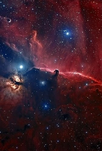 The famous Horsehead Nebula is about 1,500 light-years from Earth, in the constellation Orion. The nebula is located just to the south of the star Alnitak, which is farthest east on Orion's Belt, and is part of the much larger Orion Molecular Cloud Complex.
