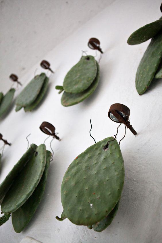 Accrocher des morceaux de cactus au mur, une idée originale et très chouette #cactus #lover