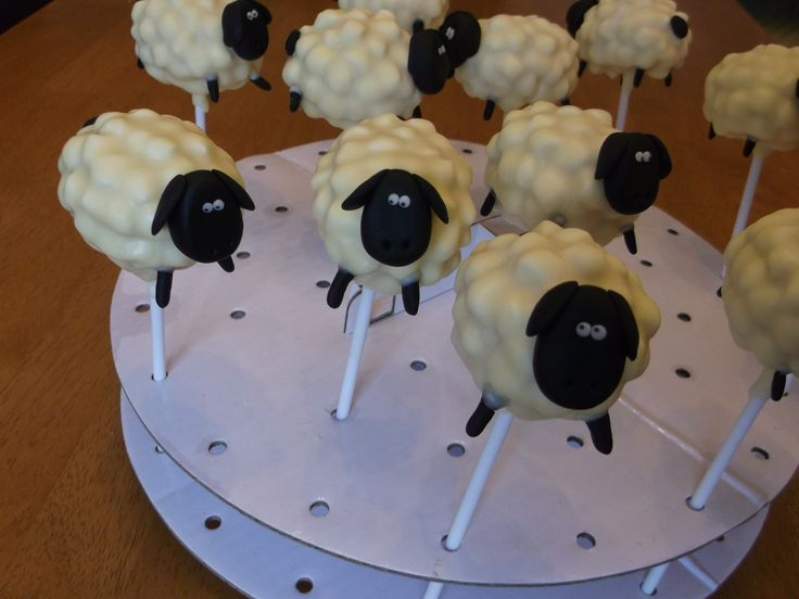 Sheep cake pops x