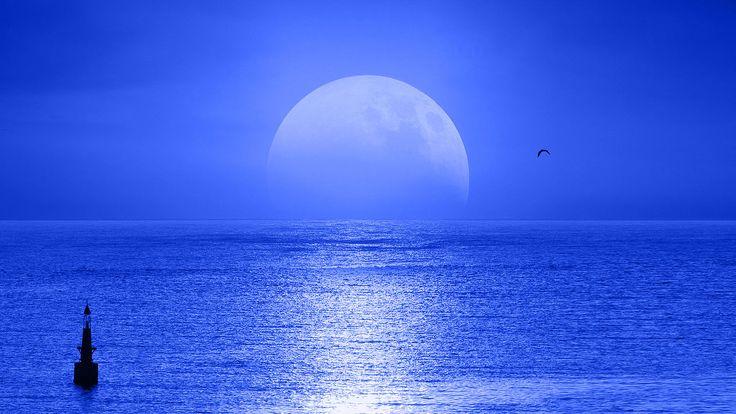 Algunas expresiones construidas con Azul  Algunas palabras o expresiones de las que forma parte el color azul  Al azul. Dicho del pescado: cocido en un caldo corto con vinagre que le hace adquirir a su piel un tono azulado.  Aguja azul. Pez del mar Caribe Makaira nigricans que mide hasta cuatro metros y puede pesar hasta 1 tonelada. Su cabeza es alargada y puntiaguda. Debe su nombre al cuerpo de color azul oscuro en su parte superior.  Azul celeste. Azul claro. Azul con mucha mezcla de…