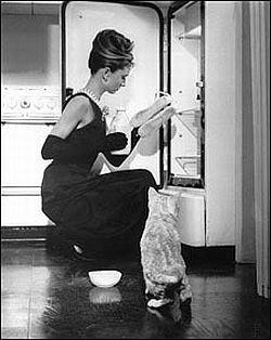 Breakfast at Tiffany's.: Cat, Breakfast At Tiffany'S, Breakfast At Tiffanys, Audrey Hepburn, Holly Golightly, Movie, Breakfastattiffani, Audreyhepburn, Breakfastattiffany