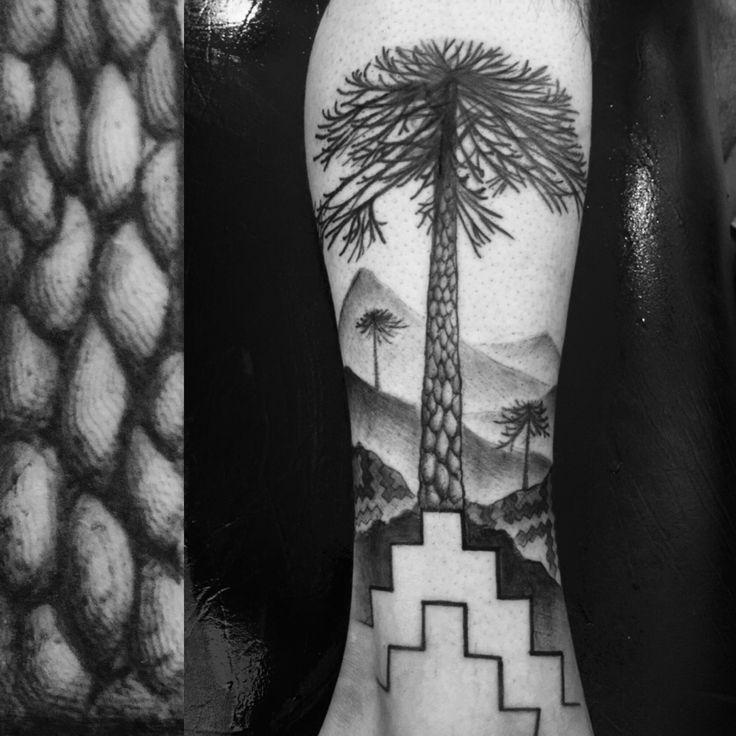 Mapuche  araucaria IXREGION tatuaje Tattoo