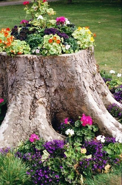 recycling tree-stump for planter and decorating with flowers. A great way to turn an eyesore into a centerpiece.