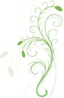 Flora, Resumen, Filigrana, Mapa
