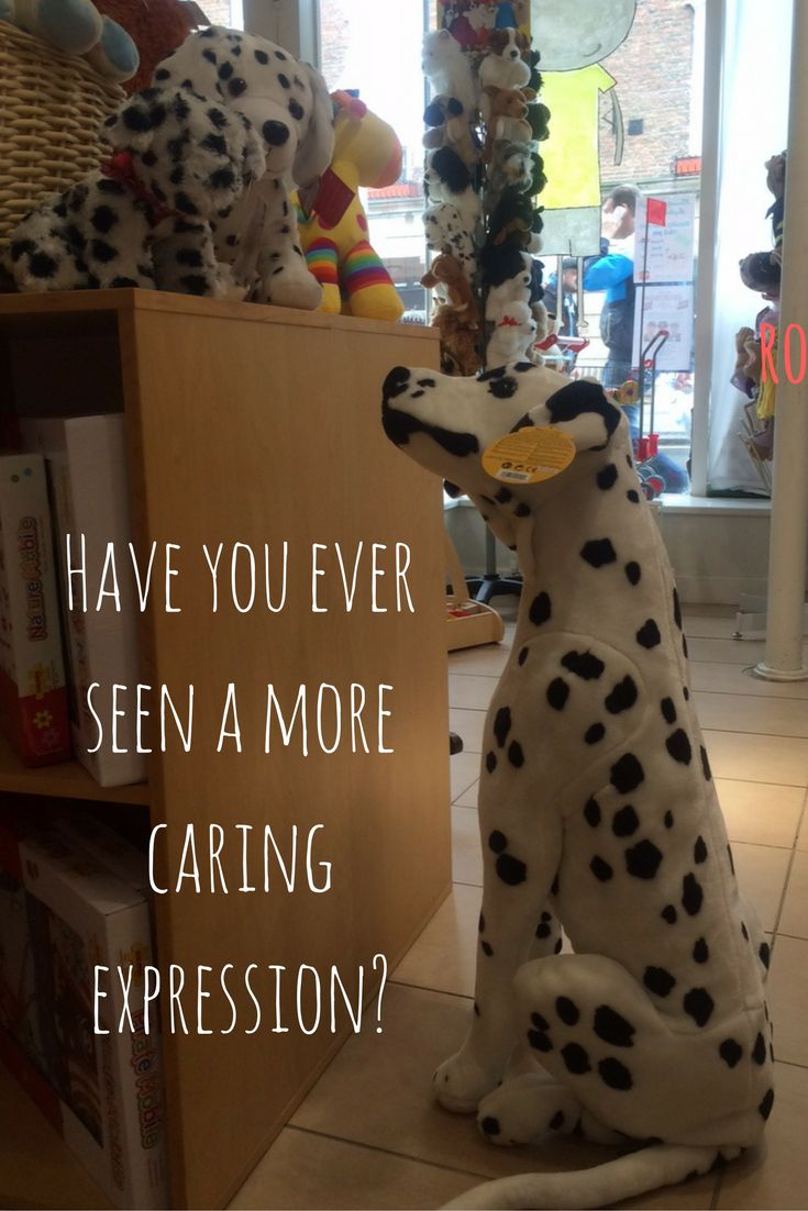 Life sized Dalmatian dog from Melissa and Doug.  Just love the way (s)he looks at the little pups also from Melissa and Doug.