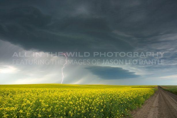 Prairie Energy by amazing Saskatchewan photographer: Jason Leo Bantle
