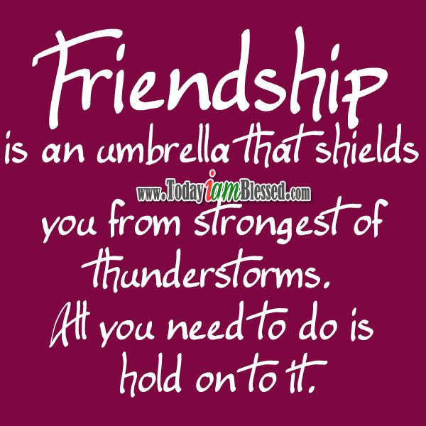 Quotes About Friendship Gifts : Best images about friendship quotes on