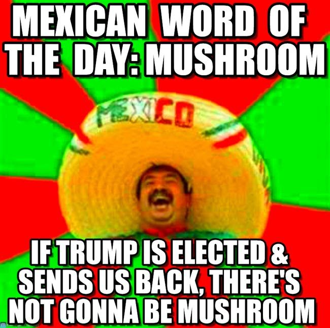 Funny Meme Words : Best mexican word of the day images on pinterest