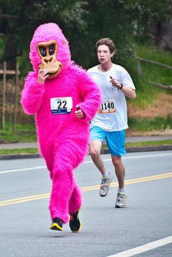 Mobile Adventure Walks iPhone app is going to make this years Zazzle Bay to Breakers the most interactive, ever! If you're running, walking or ..., let the Pink Gorilla guide you along the way as you solve clues and interact with the race!