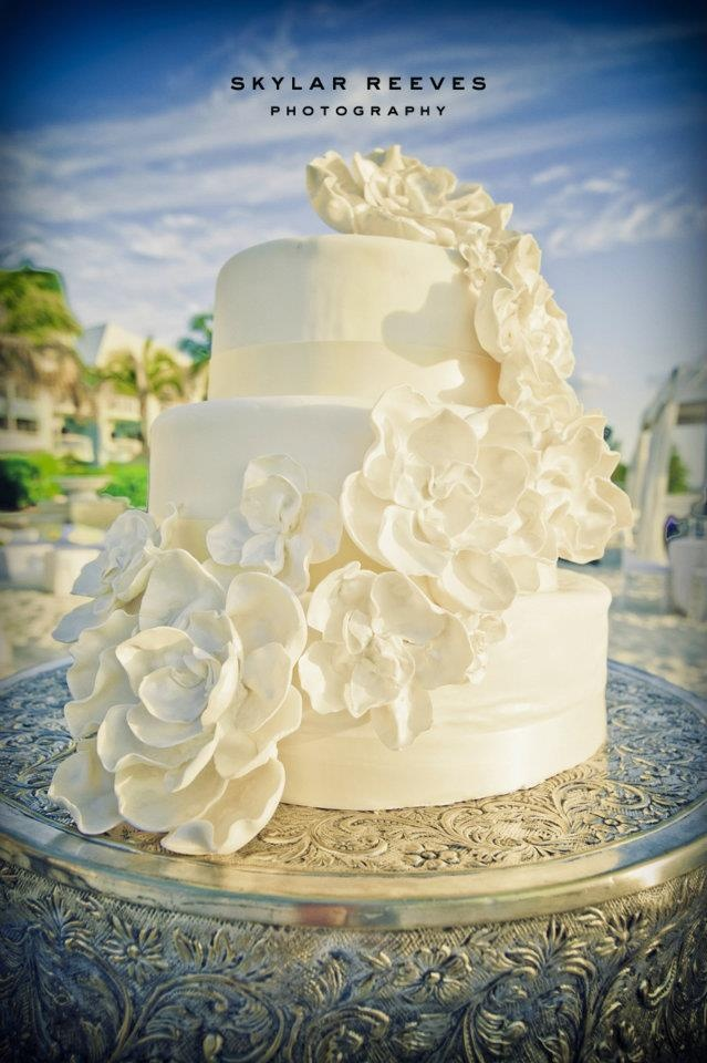 island wedding cakes 19 best cayman islands jevel wedding planning images on 16499