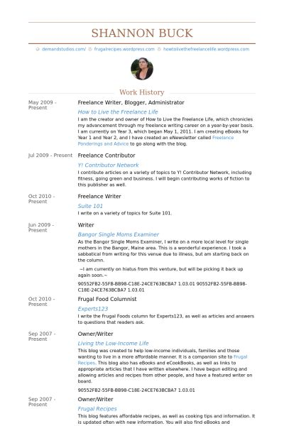 freelance writer, blogger, administrator Resume example