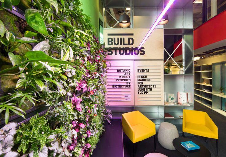 Botanic Art wall, by Build Studios