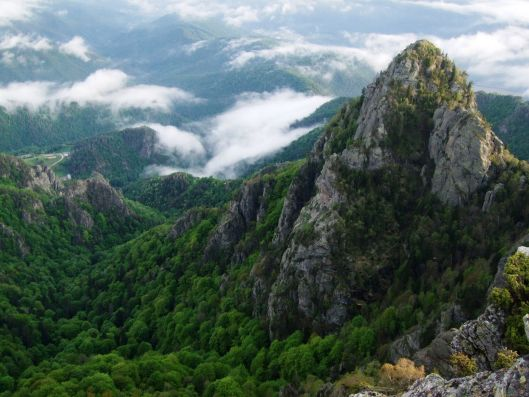 near cozia  carpathian mountains romania